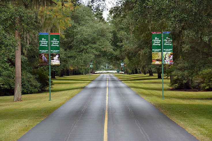 Entering Brookgreen Gardens in Murrell's Inlet, SC